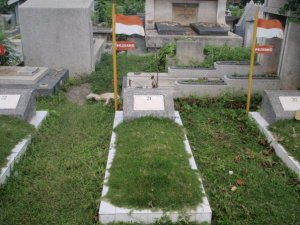 Makam Pahlawan A.Y. Patty